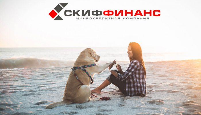 Разработка сайта-визитки skiffinans.ru - VD Create создание сайтов
